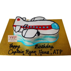 (2256) Airplane Shaped Birthday Cake for the Little Pilot